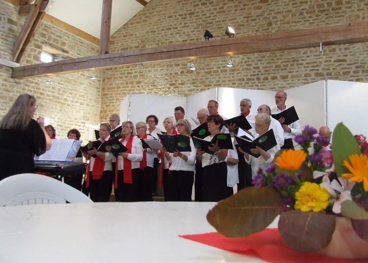 Venez Assister à Un Concert Chant Et Orgue, Sur Un Orgue Cavaillé-coll De 1877 ! à Chateauvillain