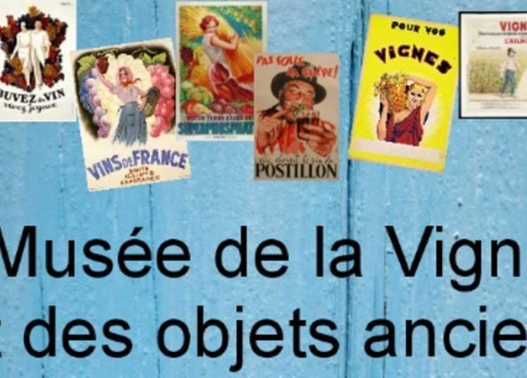 Venez Découvrir L'histoire Viticole Du Village à Troo