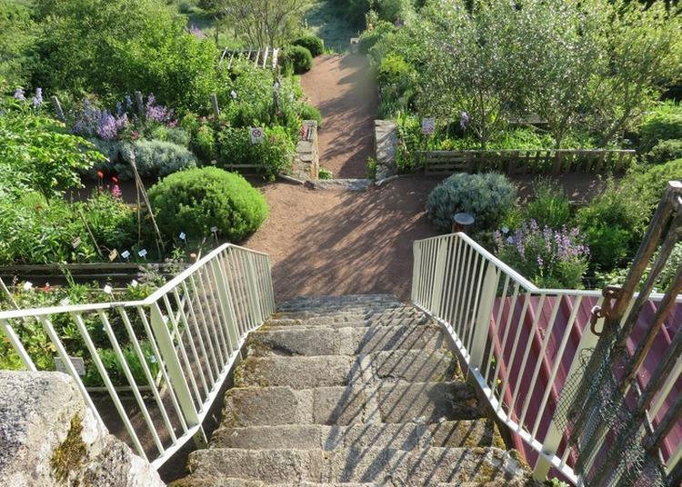 Venez Découvrir Les Différents Jardins Des Abbayes à Benevent l'Abbaye