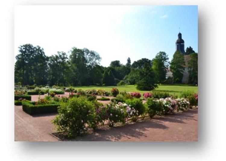 Venez Découvrir Ou Redécouvrir Les Jardins Thématiques à Thiron Gardais