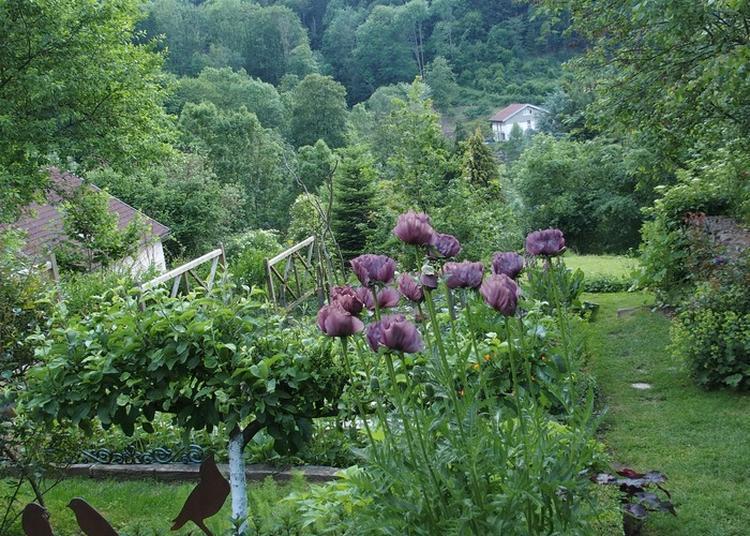 Venez Découvrir Un Jardin Au Milieu De Nulle Part... à La Croix aux Mines