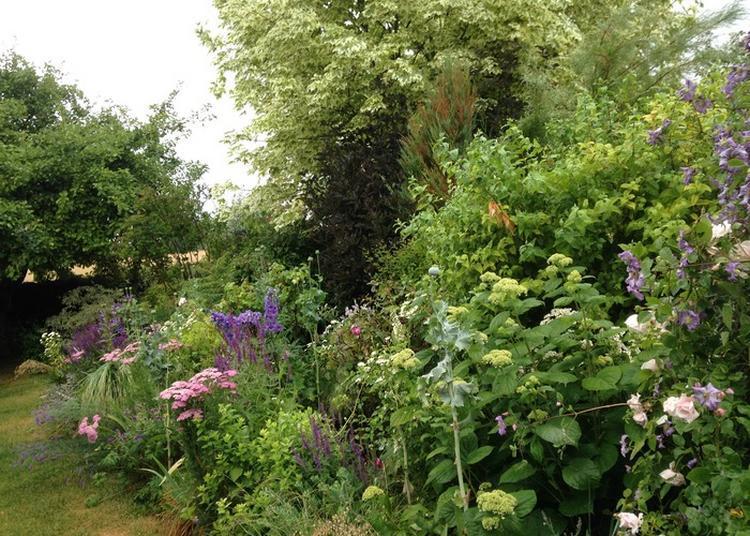 Venez Découvrir Un Jardin De Vivaces! à Commercy