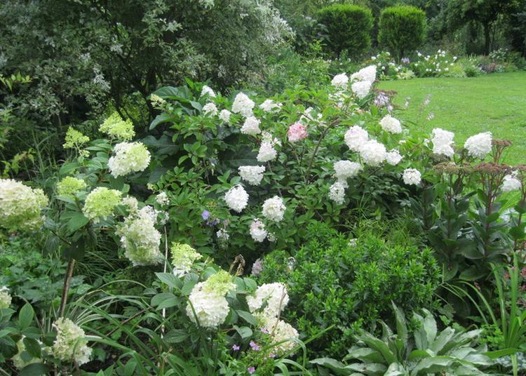 Venez Découvrir Un Jardin Romantique Créé Par Des Passionnés à Apremont la Foret