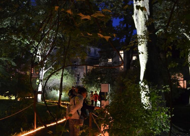 Venez Visiter Le Jardin Botanique : De Véritables Collections Vivantes à Strasbourg