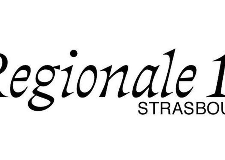 Vernissages Regionale 18 Strasbourg