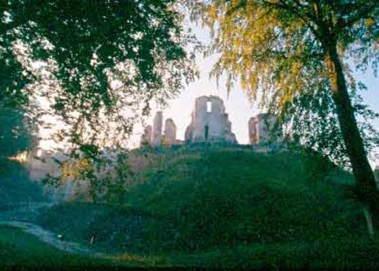 Vestiges Du Château De Fère à Fere en Tardenois