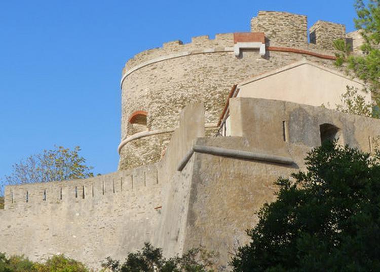 Viistes Des Forts Sur L'île De Port-cros, Balades Botaniques Et Exposition Au Fort De L'estissac à Hyeres
