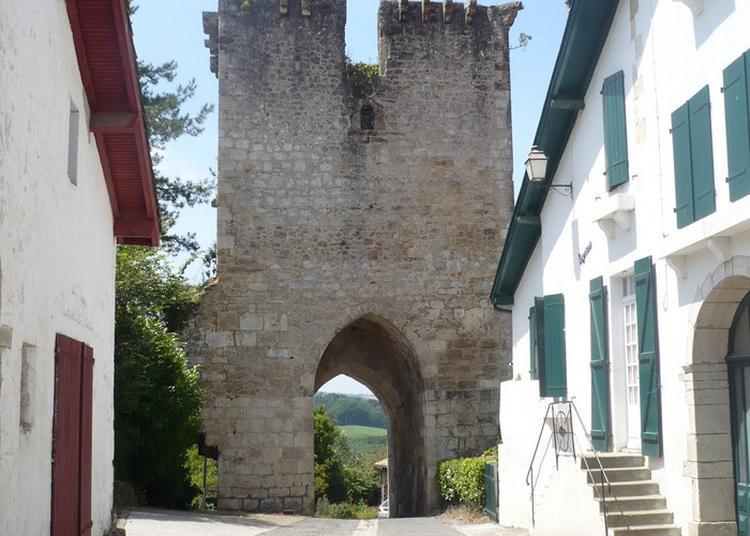 Visite À Pied De La Bastide à Oeyregave