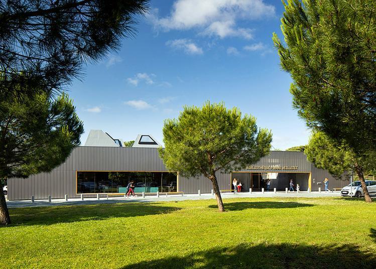 Visite Architecturale De La Bibliothèque à Bordeaux