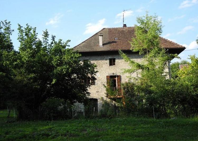Visite Au Fil De L'eau : Le Moulin De Meythet Et Sa Forêt à Annecy