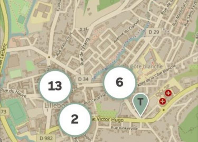 Visite Autour De L'application Mobile à Lillebonne