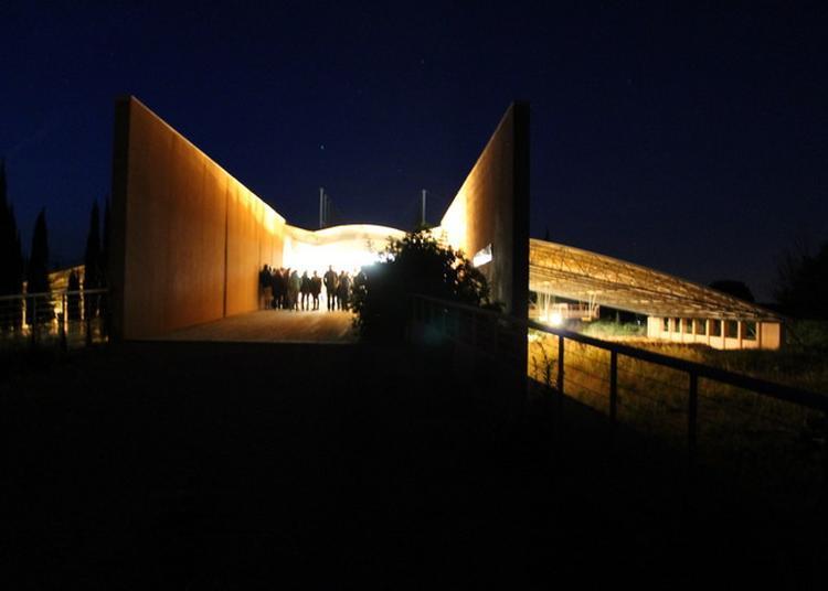 Visite Aux Jumelles à Salleles d'Aude