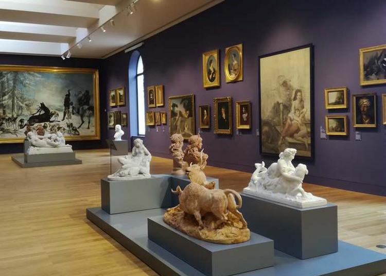 Visite Bienvenue Au Musée à Besancon