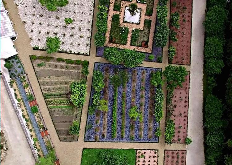 Visite Botanique Pour Découvrir L'art Du Maître Jardiniste Italien Dom Pacello De Mercoliano à Amboise