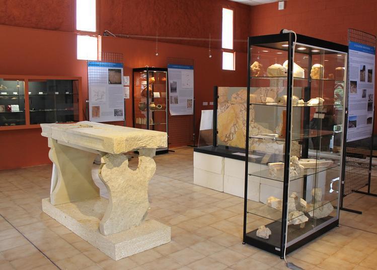 Visite Commentée Du Musée à Murviel les Montpellier
