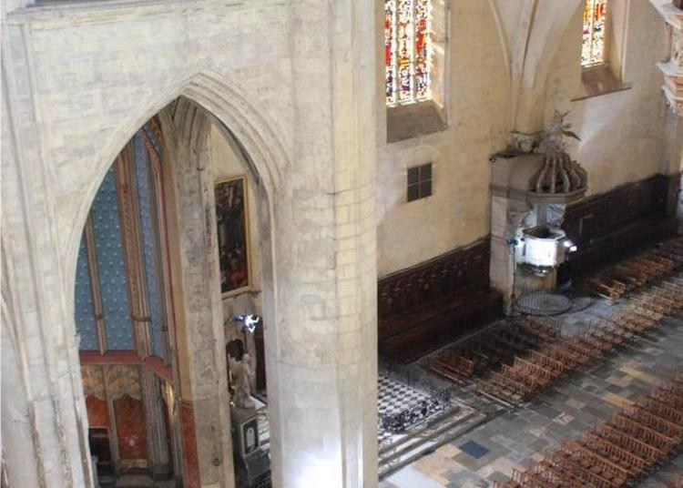 Visite Commentée à Toulouse
