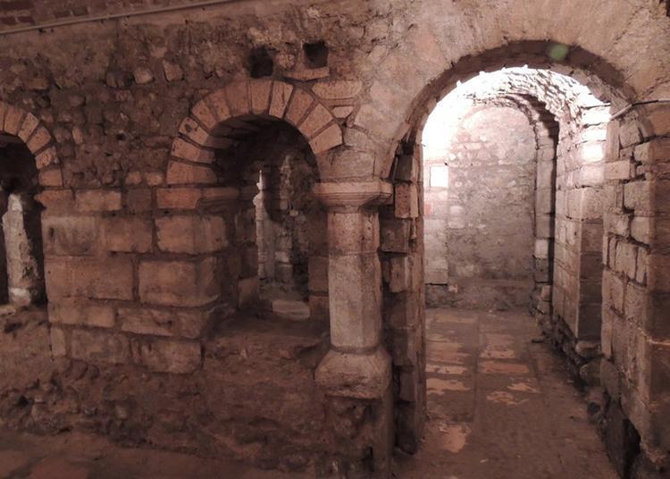 Visite Commentée De 15mn à Orléans