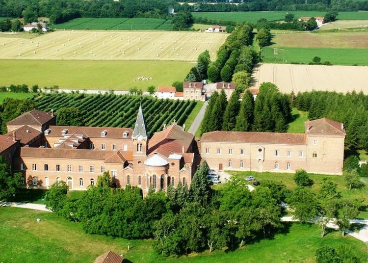 Visite Commentée De L'abbaye. à Le Plantay