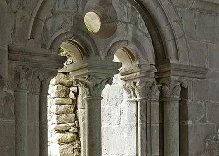 Visite Commentée De L'abbaye De La Celle, Monument Historique Médiéval Témoin De L'art Roman Provençal