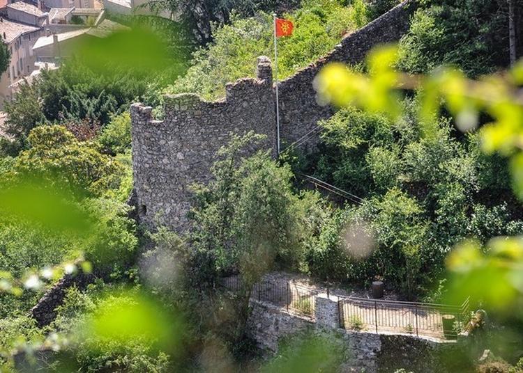 Visite Commentée De L'ancien Parc Des Moines Cordeliers à Tournon sur Rhone