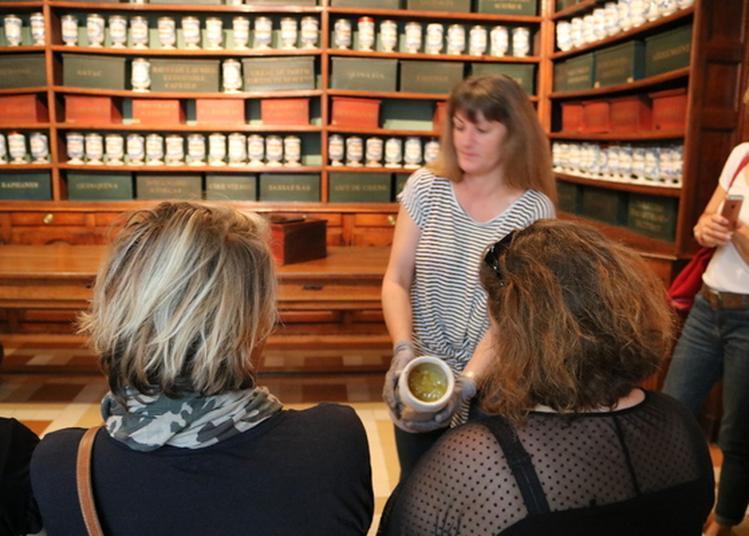 Visite Commentée De L'apothicairerie- Bourg En Bresse à Bourg en Bresse