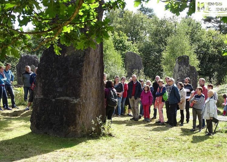 Visite Commentée De L'archéosite Des Menhirs De Monteneuf