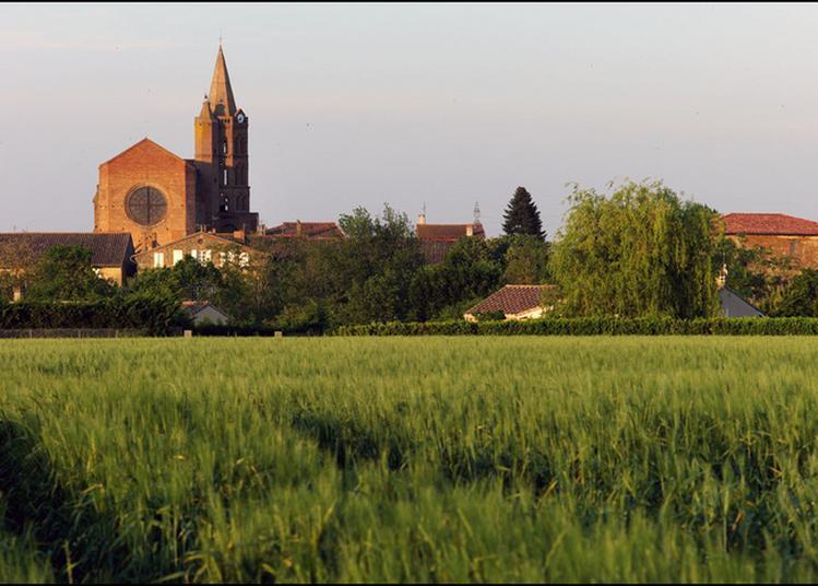 Visite Commentée De L'église De Daux à Mondonville