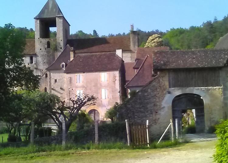 Visite Commentée De L'église Sain-etienne Et Du Bourg à Auriac du Perigord