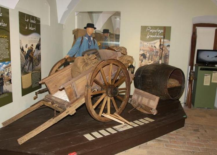 Visite Commentée De L'exposition La Frontière, Histoires De Contrebande à Thonon les Bains