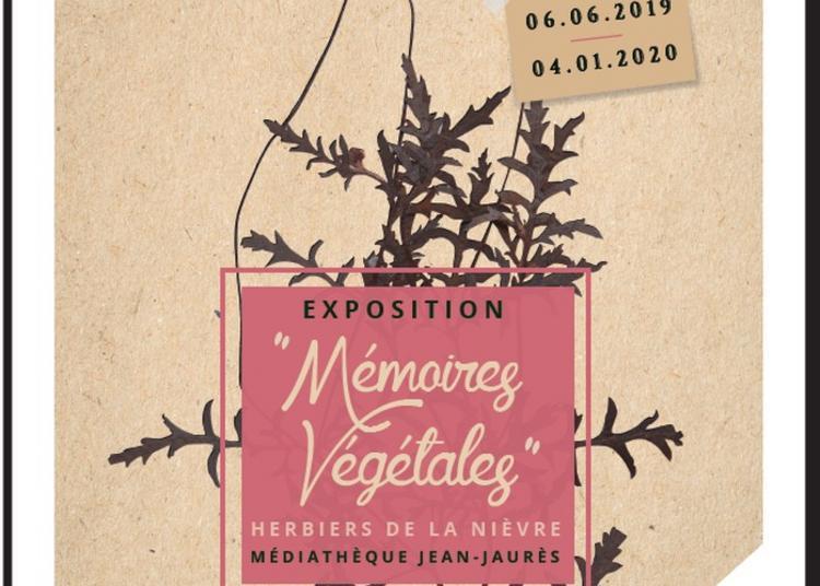 Visite Commentée De L'exposition Mémoires Végétales, Herbiers De La Nièvre à Nevers