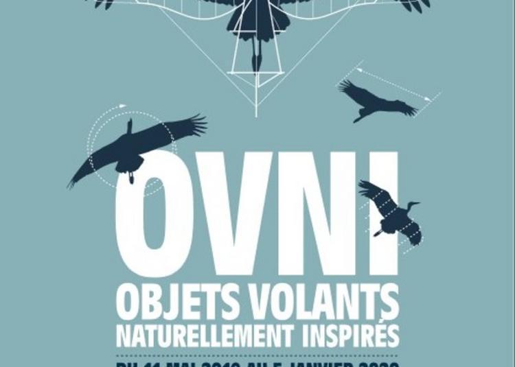 Visite Commentée De L'exposition Ovni à Montbeliard