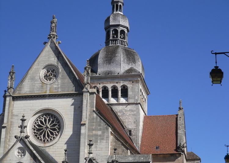 Visite Commentée De La Basilique Notre-dame De Gray