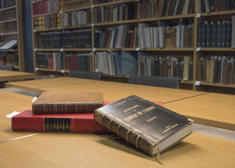 Visite Commentée De La Bibliothèque Charcot à Paris 13ème