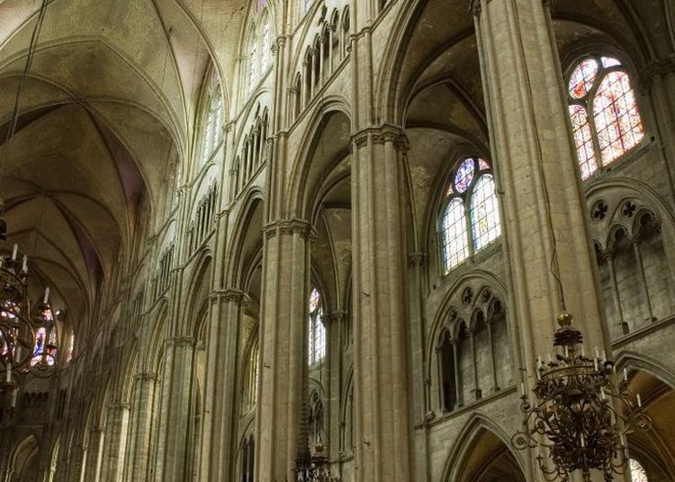 Visite Commentée De La Cathédrale à Bourges