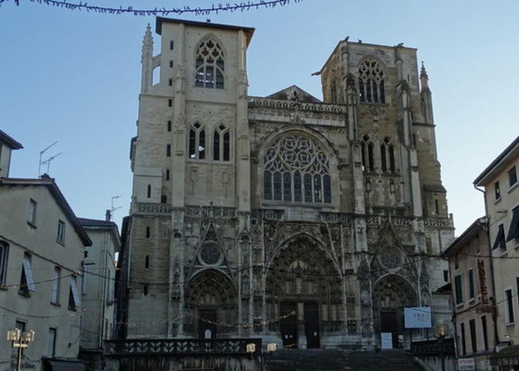 Visite Commentée De La Cathédrale, Joyau D'architecture. à Vienne
