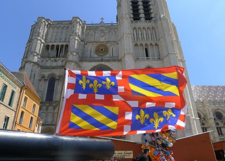 Visite Commentée De La Cathédrale Saint-etienne à Sens