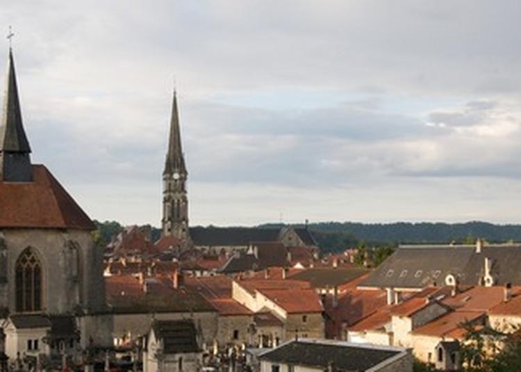 Visite Commentée De La Chapelle Sainte-anne à Joinville