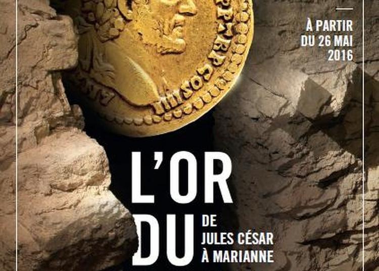 Visite Commentée De La Crypte Archéologique Et De L'exposition à Paris 4ème