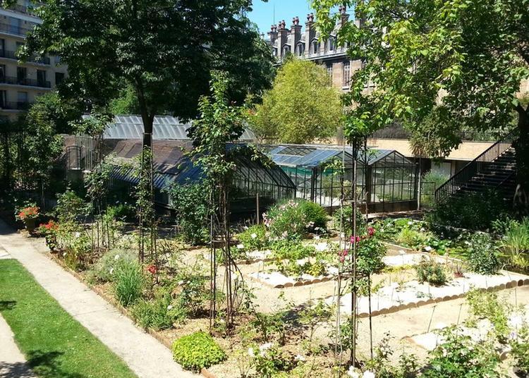 Visite Commentée De La Faculté De Pharmacie De Paris : Hall D'honneur Et Jardin Botanique à Paris 6ème