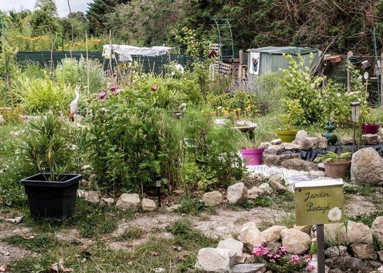 Visite Commentée Découverte Des Jardins Partagés à Argenteuil