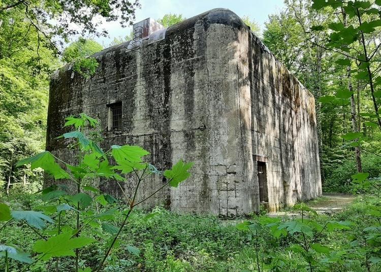 Visite Commentée Des Bunkers De Pignerolle à Saint Barthelemy d'Anjou