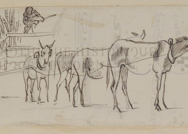 Visite Commentée Des Vestiges D'une Ancienne Sucrerie Kervéguen à Le Tampon