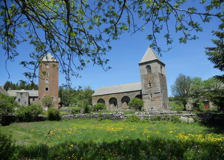 Visite Commentée Des Vestiges De La Domerie D'aubrac à Saint Chely d'Aubrac