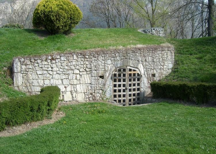 Visite Commentée Des Vestiges Du Fort De Montmélian. à Montmelian