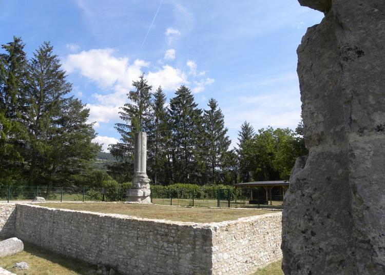 Visite Commentée Des Vestiges Du Temple à Izernore