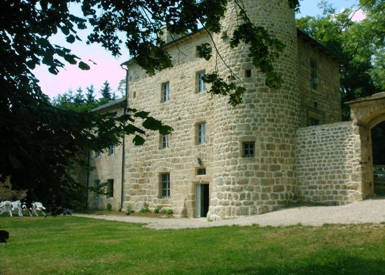 Visite Commentée Du Château à Montregard