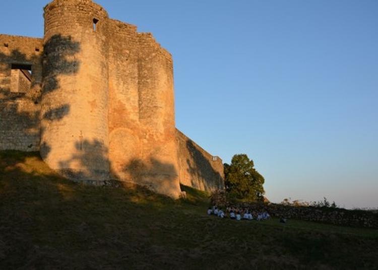 Visite Commentée Du Château De Benauge à Arbis