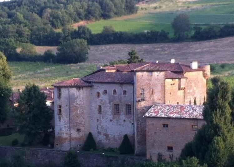 Visite Commentée Du Château Du Rapetour. à Theize