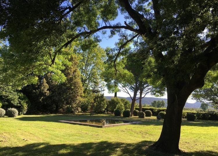 Visite Commentée Du Jardin Botanique à Tarascon