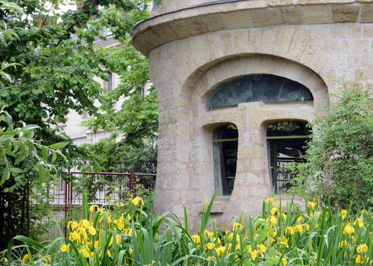 Visite Commentée  Du Jardin Corbin à Nancy